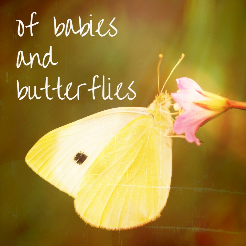 Of Babies And Butterflies